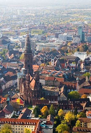295px-Freiburg from above